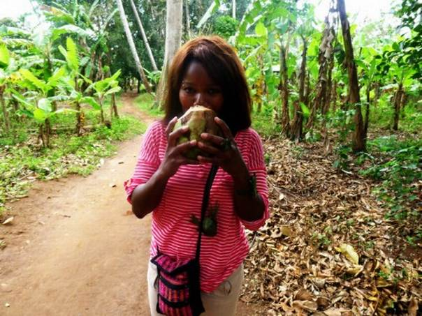 Bounty from the forest could help ensure food security for people who are currently malnourished, says Bronwen Powell, a scientist at the Center for International Research. Picture Credit: HollywoodSmile78