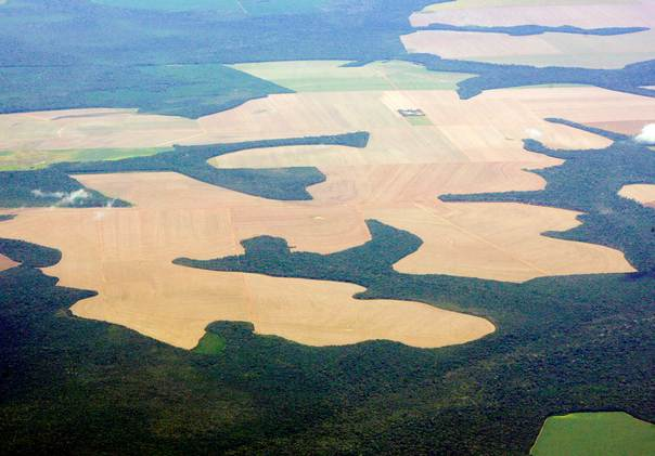 Virgin Amazon rain forest surrounds patches of deforested land prepared for the planting of soybeans, in this aerial photo taken over Mato Grosso state in western Brazil, on February 25, 2008. REUTERS/Paulo Whitaker