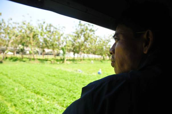 A man looks out of train window at land cleared for agriculture use, just outside of Yangon, Myanmar. THOMSON REUTERS FOUNDATION/Amantha Perera