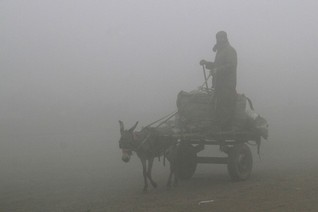 A man guides his donkey and cart in heavy smog in Lahore