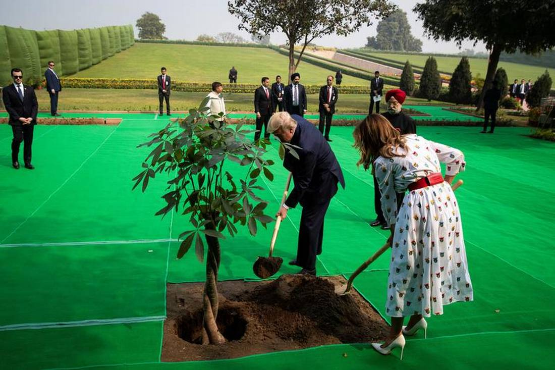 India's tree planting, conservation push sparks land conflicts