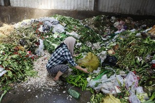 Food wasted by rich nations could end world hunger - U.N.