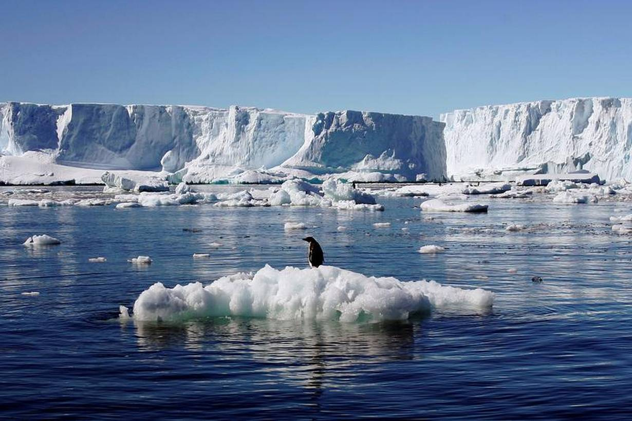 Polar sea ice the size of India vanishes in record heat