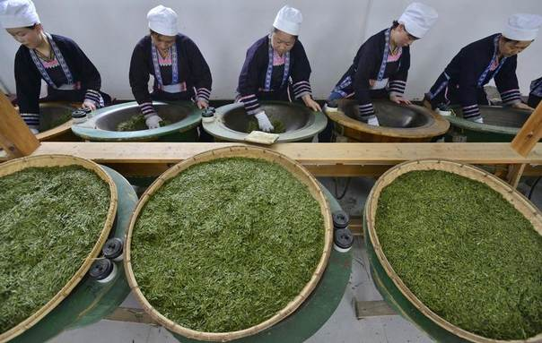 Women work at a tea leaf processing factory in Guizhou province, China March 28, 2014. REUTERS/Sheng Li