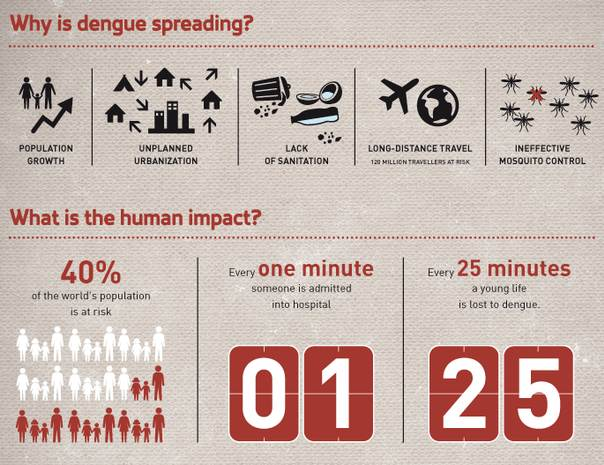 Infographic courtesy of IFRC
