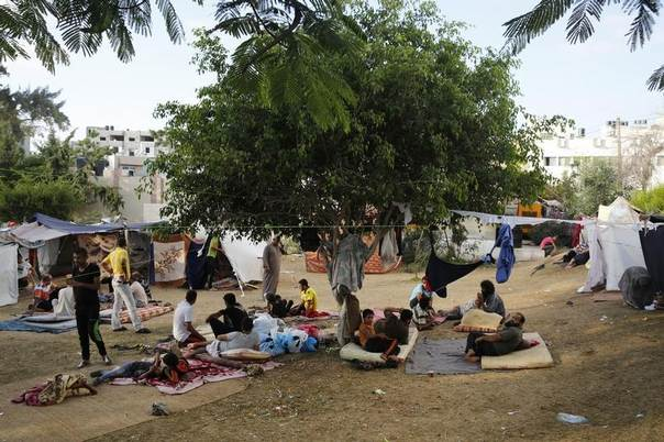 Palestinians who fled an Israeli ground offensive and air strikes, seek shelter in makeshift tents in the garden of the Shifa hospital in Gaza City, July 31, 2014. REUTERS/Finbarr O'Reilly