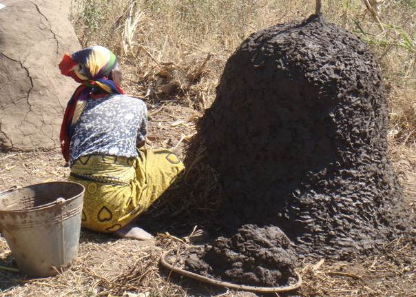 A woman buries organic matter in mud to make compost in Karonga, northern Malawi. TRF/Karen Sanje